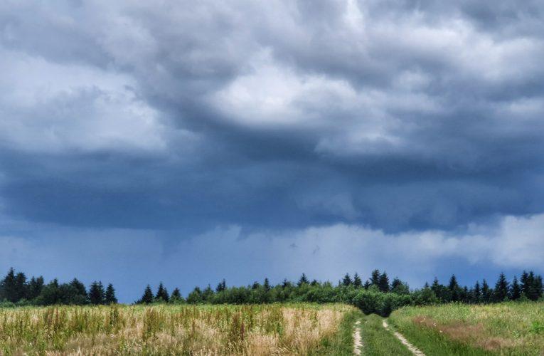 Prognoza burzowa – 06.07