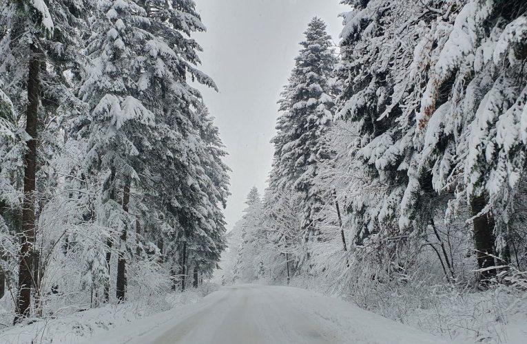 Kolejna porcja śniegu – 20 cm w jedną noc. Zawieje i zamiecie.